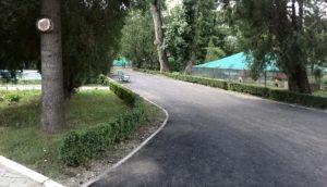 alee zoo