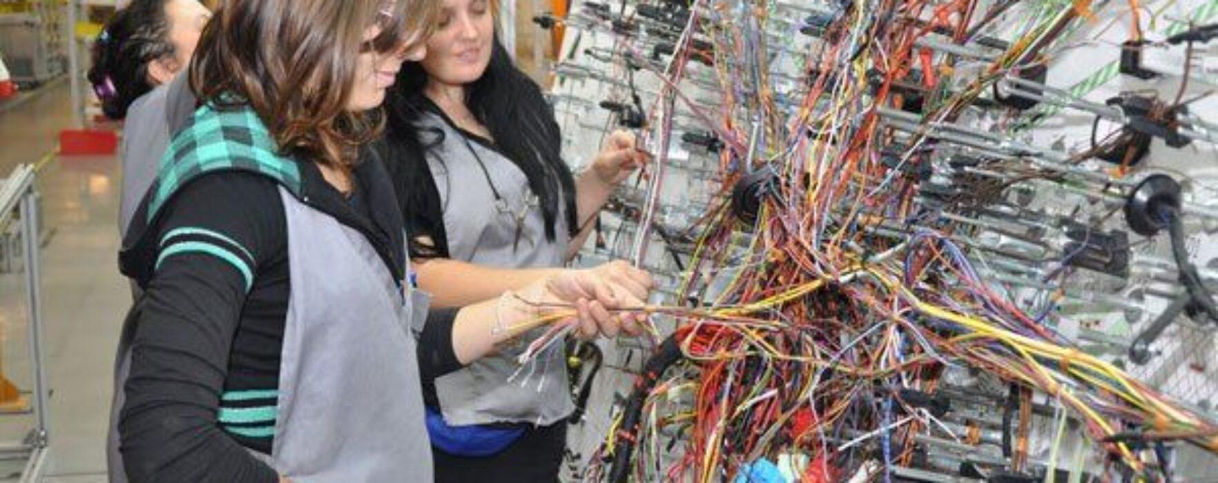 Dâmboviţa: 250 de locuri de muncă de confecţioneri cablaje auto