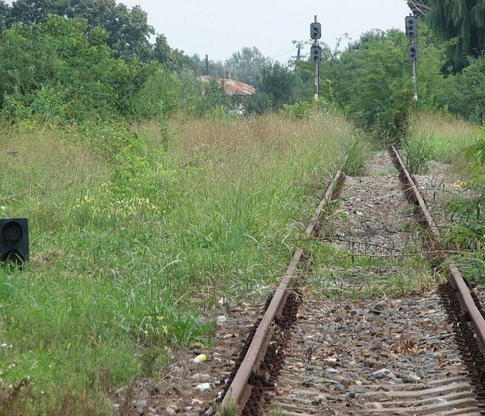 Dan Şova: Se va relua transportul feroviar de călători de la Târgovişte spre Pietroşiţa şi Ploieşti