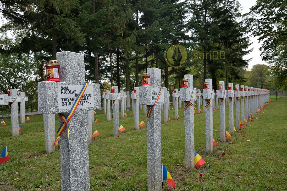 cimitir-teis-11
