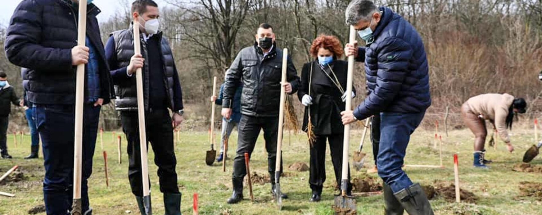 Marcel Ciolacu a plantat copaci în Dâmboviţa, de Ziua Internaţională a Pădurii