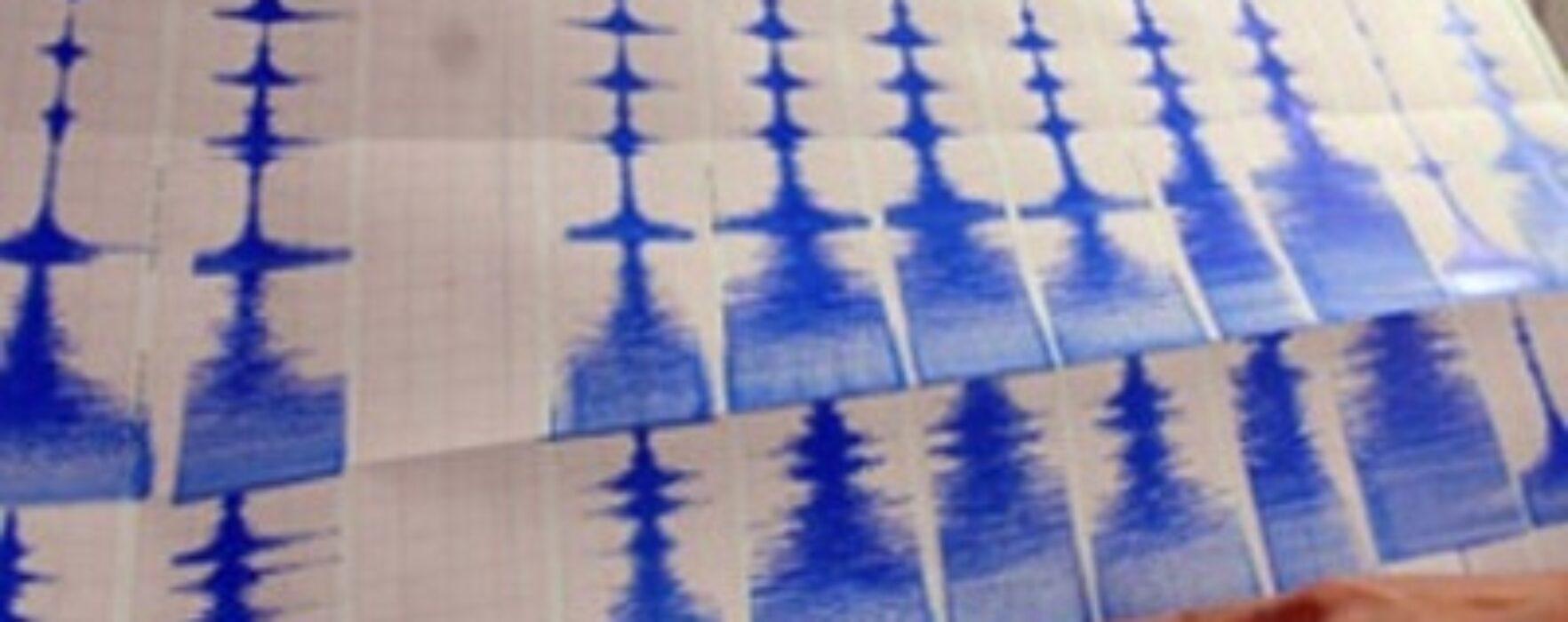 Cutremur de 4,9 grade magnitudine, resimţit şi la Târgovişte