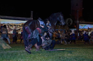 festival-dracula11