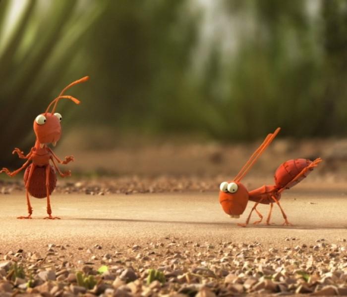 NASA a trimis 800 de furnici în spaţiu, pentru a le studia comportamentul