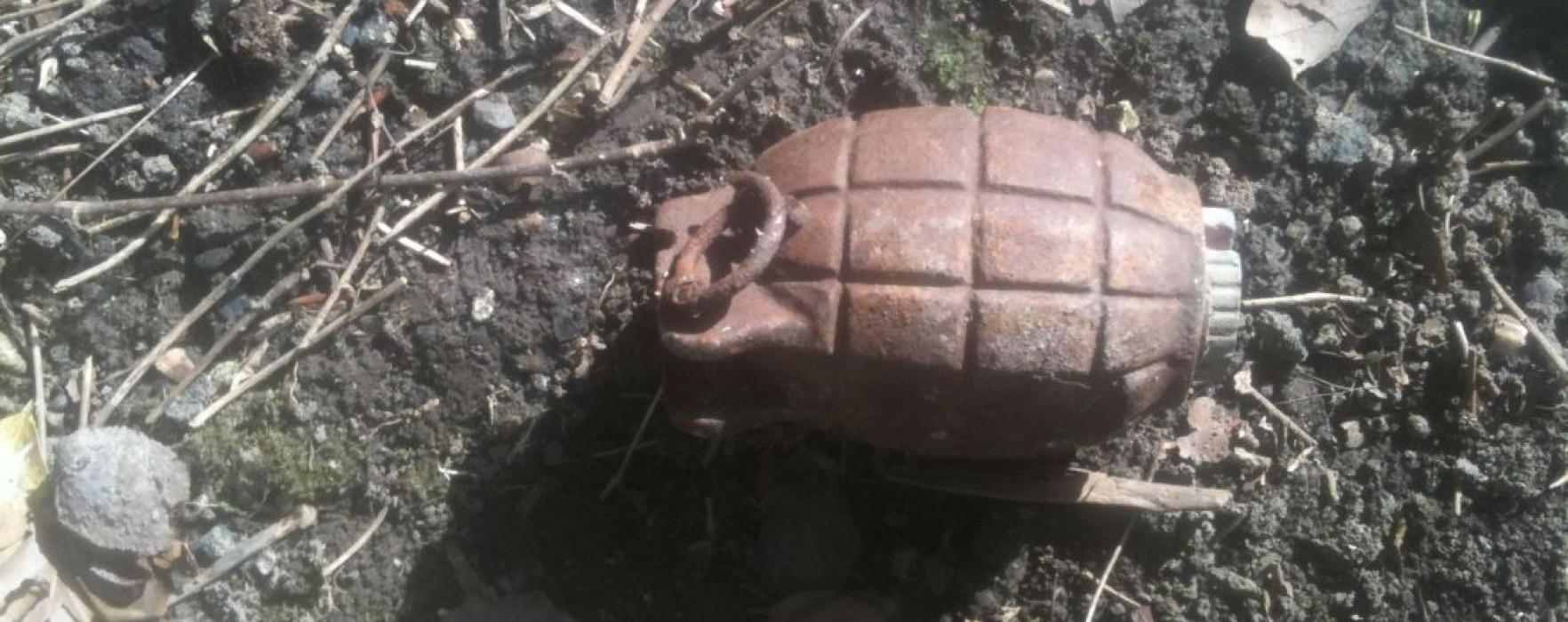 Grenadă în stare de funcţionare, găsită la Odobeşti