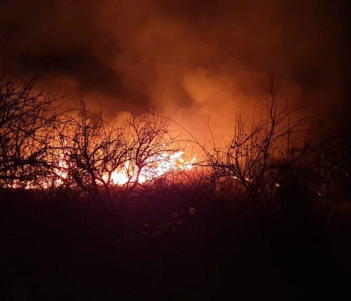 Dâmboviţa: Incendiu de vegetaţie uscată pe 10 hectare în Aninoasa