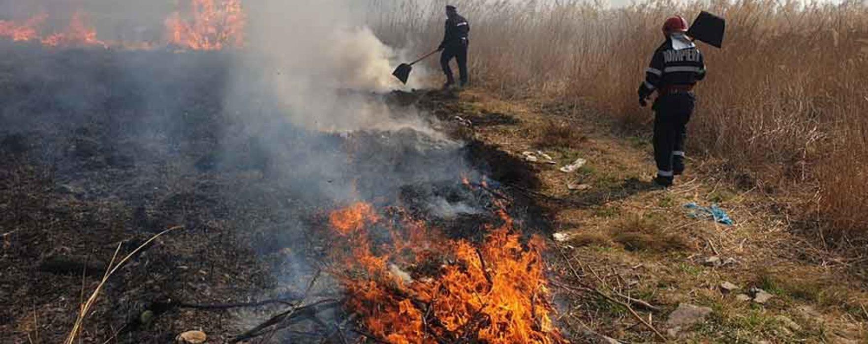 Dâmboviţa: Peste 40 de incendii de vegetaţie uscată, pompierii fac un apel să nu se mai ardă resturile vegetale