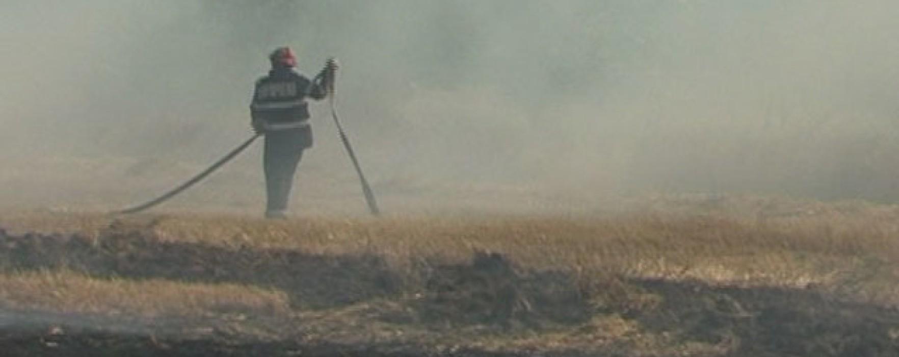 Incediu de vegetaţie uscată în zona A1, vizibilitate redusă pe autostradă în zona Petreşti