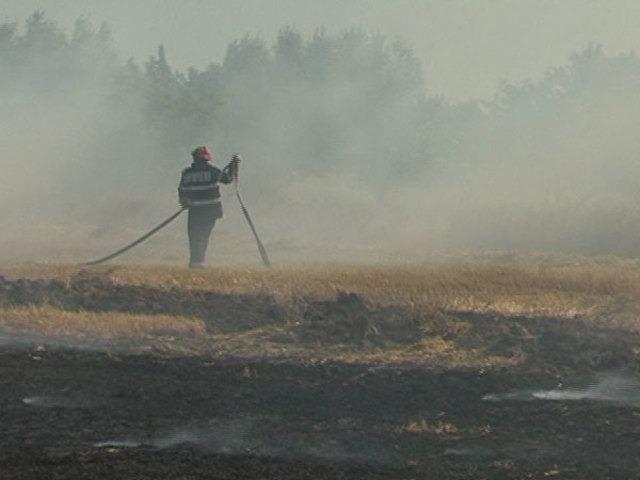 incendiu vegetatie autostrada