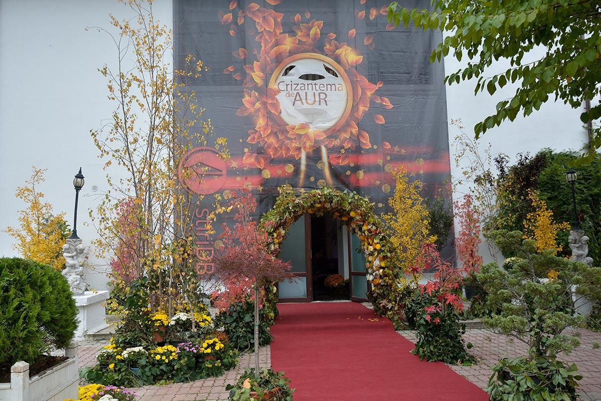 intrare-teatru-crizantema