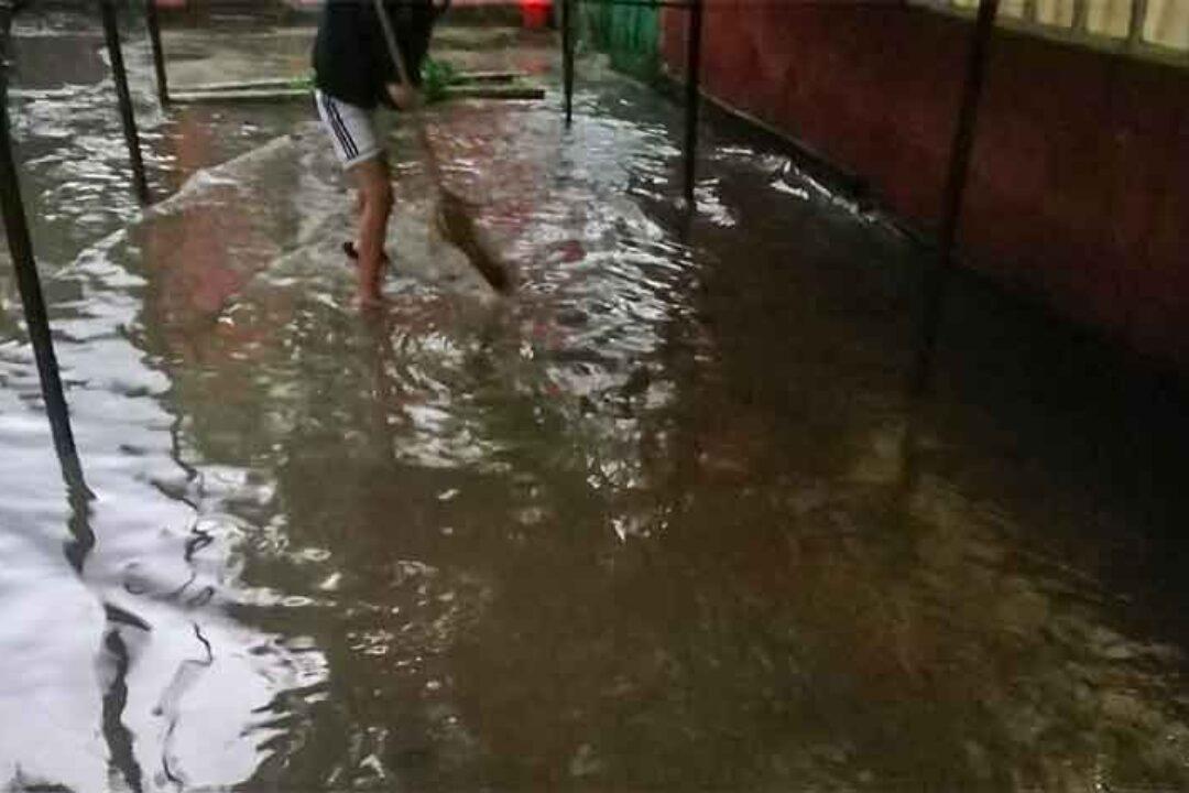 Dâmboviţa: Mai multe gospodării inundate şi un drum judeţean blocat de un copac căzut
