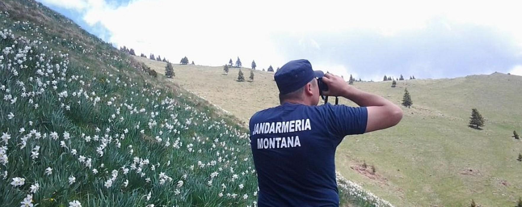 Turişti rătăciţi în Munţii Bucegi, găsiţi de jandarmii montani