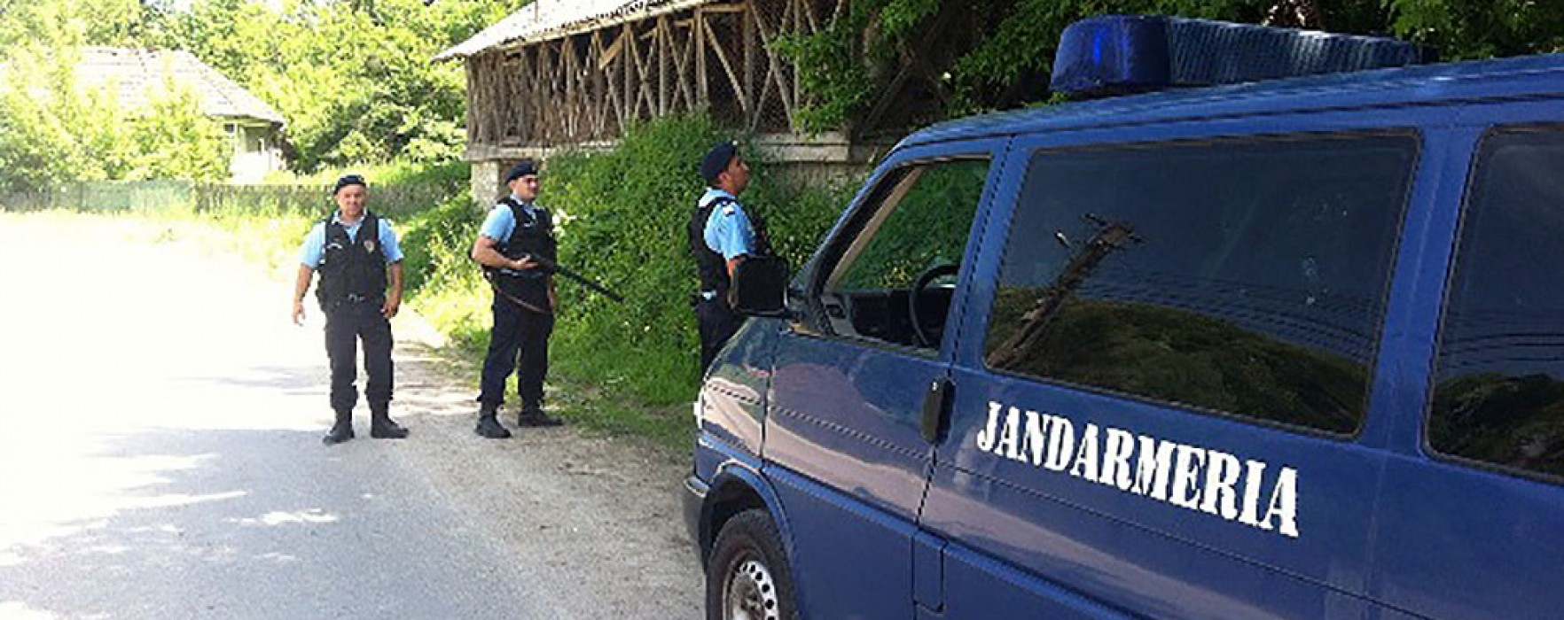 Dâmboviţa: Comună păzită de jandarmi, după ce un urs a intrat într-o gospodărie