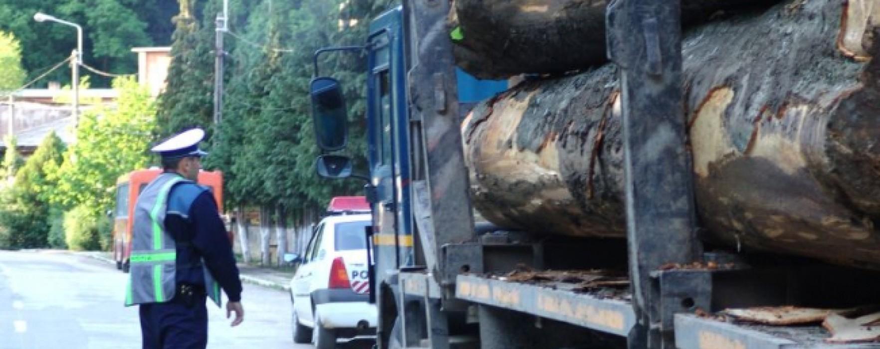 Dâmboviţa: Suspecţi de furt de lemne opriţi în trafic au spart parbrizul maşinii de Poliţie şi au bătut un pădurar