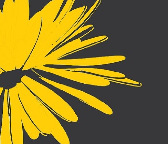stiridb.ro – partener media al Festivalului 'Crizantema de Aur'