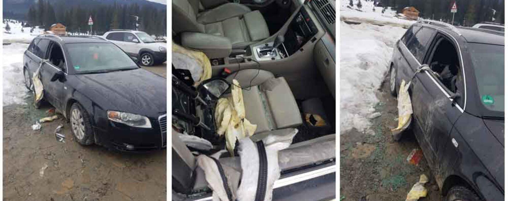 Dâmboviţa: Maşină avariată de un urs, în zona Padina