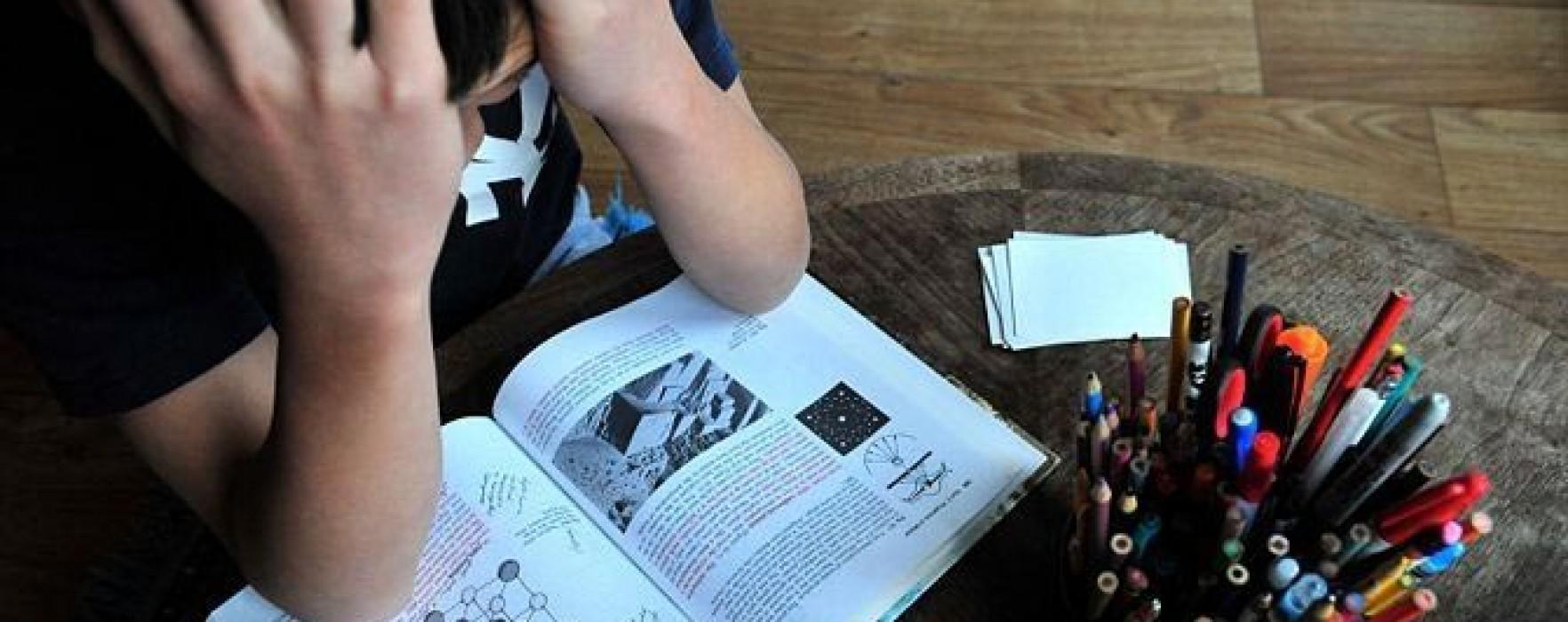 Hyperici: Sfaturi pentru îmbunătăţirea memoriei şi concentrării