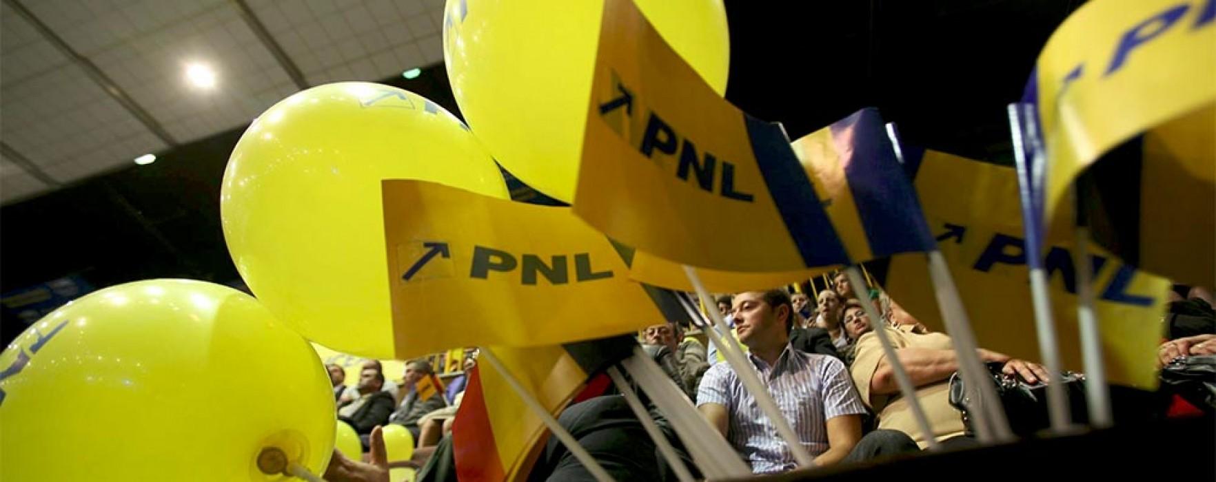Protest al PNL, vineri, în faţa Prefecturii Dâmboviţa