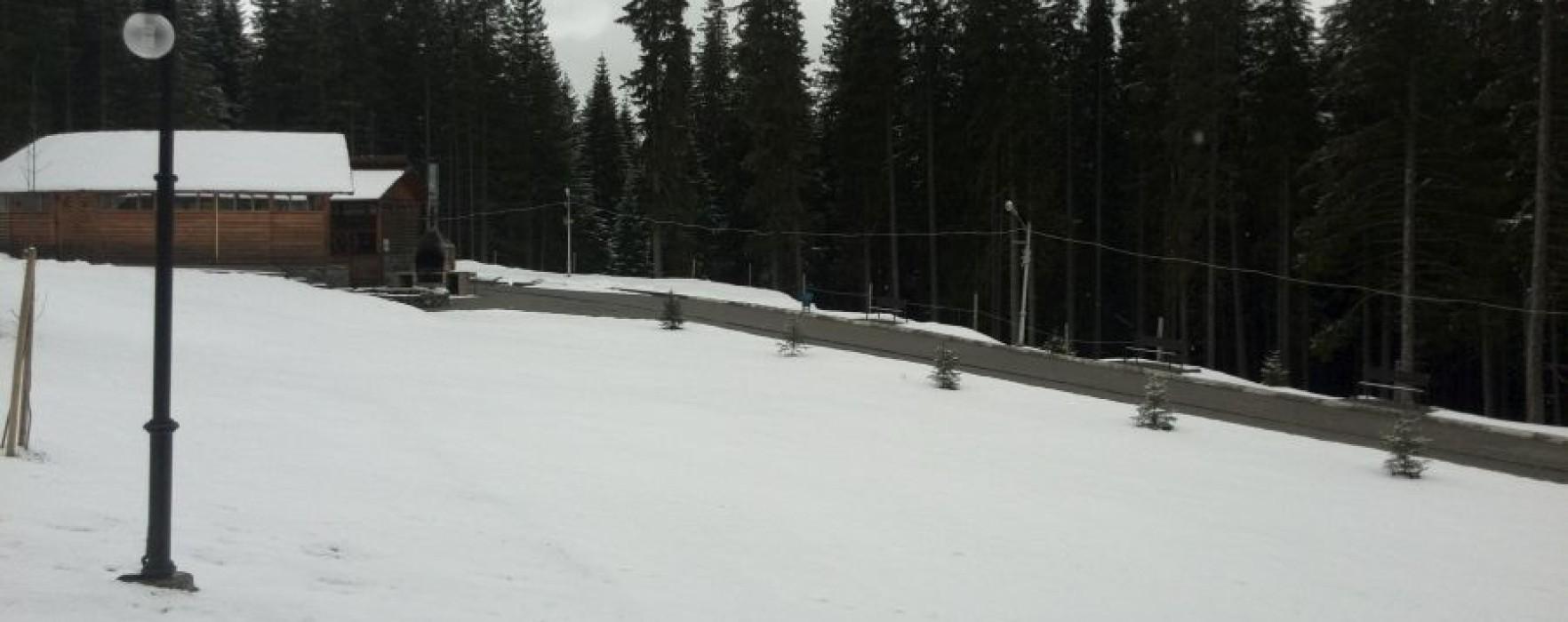 Ninge în zona montană a judeţului Dâmboviţa