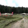 Padina Fest 2014 (foto)