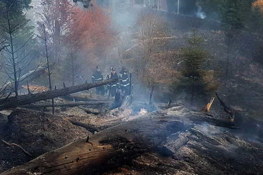 Dâmboviţa: Incendiu într-o pădure din zona Moroieni, pompierii au mers pe jos o oră până la locul incendiului