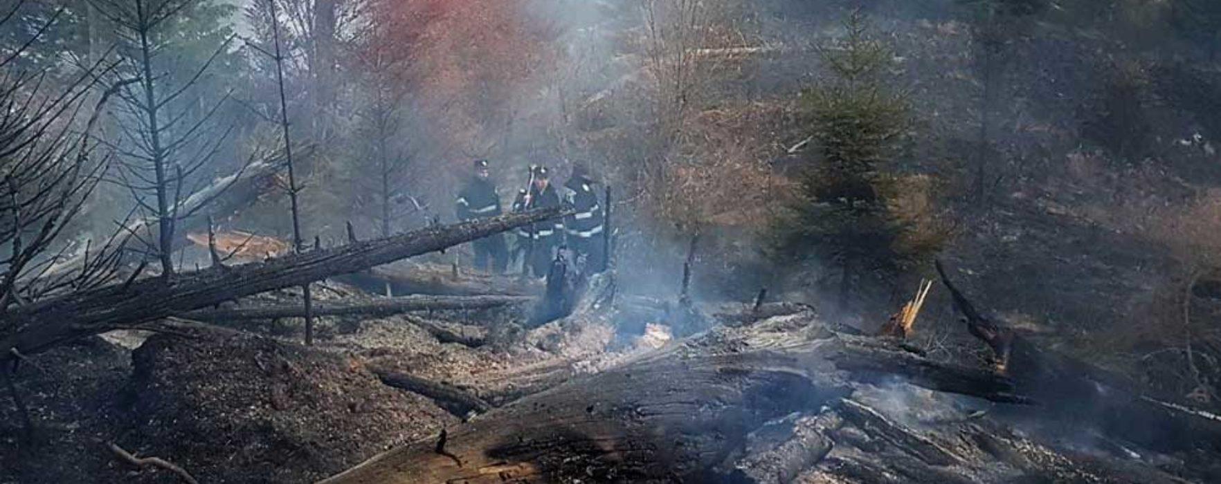 Dâmboviţa: Cauza probabilă a incendiului din pădurea de la Moroieni, focul deschis