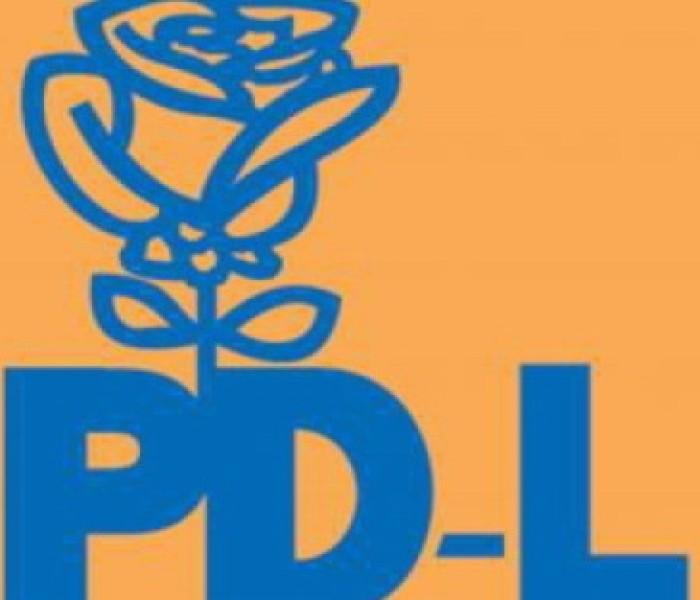 PDL Dâmboviţa îşi propune să obţină peste 30% la europarlamentare