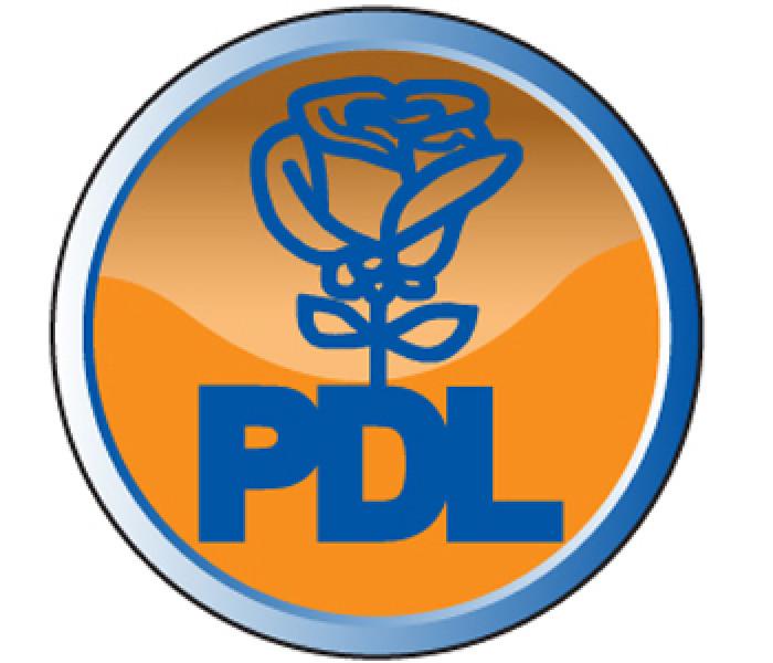 Trei primari PDL din Dâmboviţa, propuşi de BPJ pentru excludere din partid