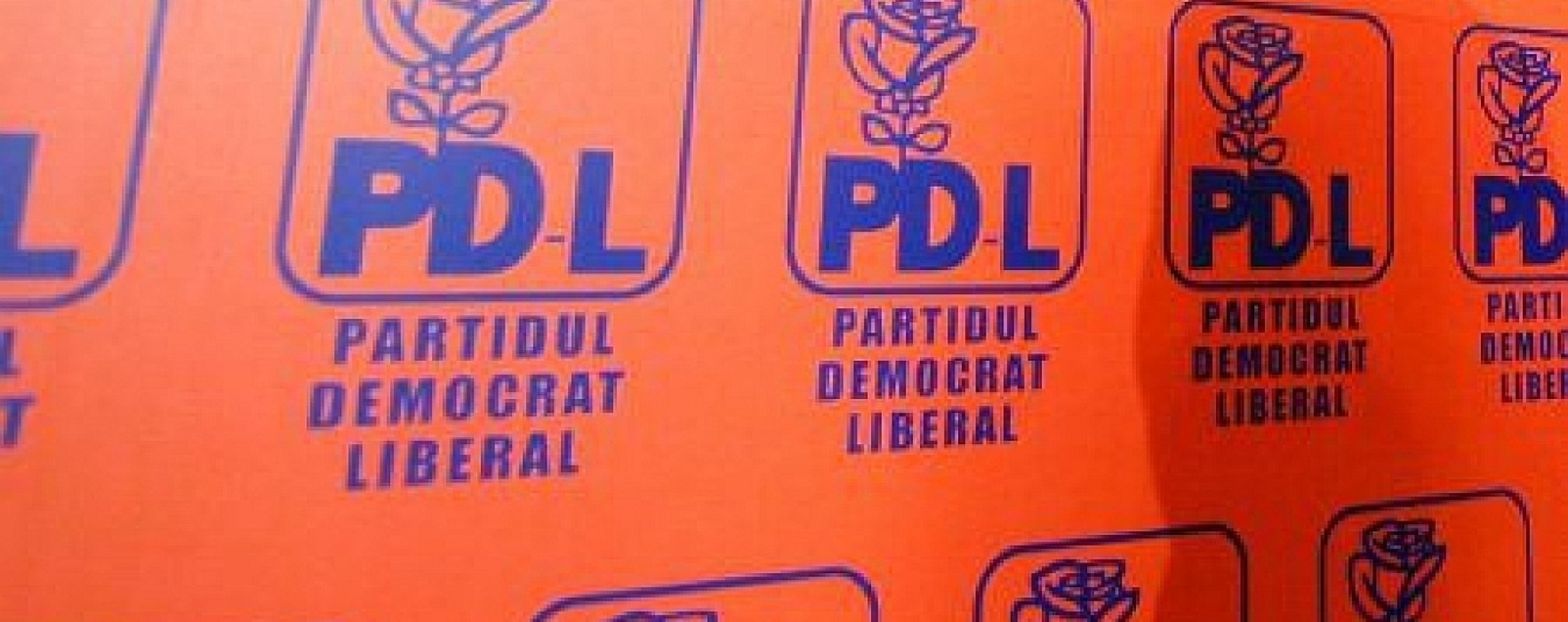 Aproximativ 40 de consilieri locali PDL din Dâmboviţa, propuşi pentru excludere din partid