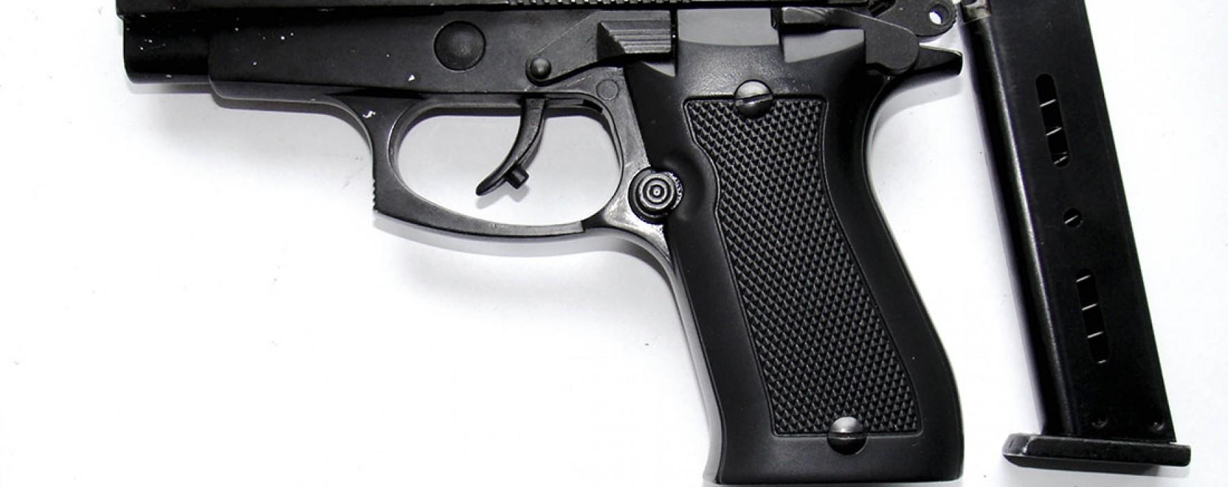 Dâmboviţa: Aproape 200 de arme confiscate, anul trecut