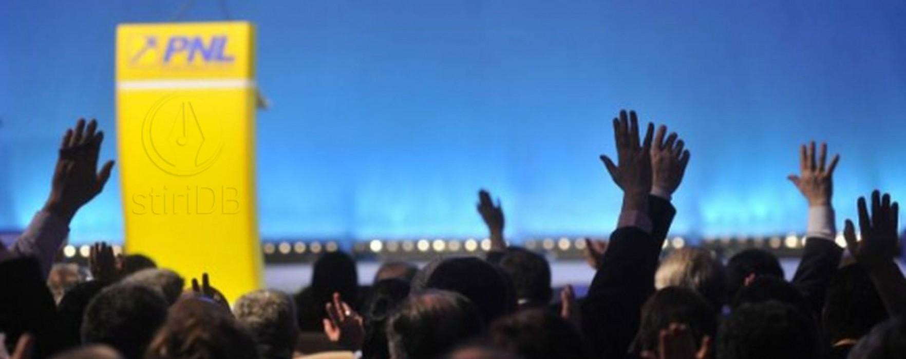 Cezar Preda (PNL) cere unificarea dreptei într-o platformă care să îl susţină pe Iohannis
