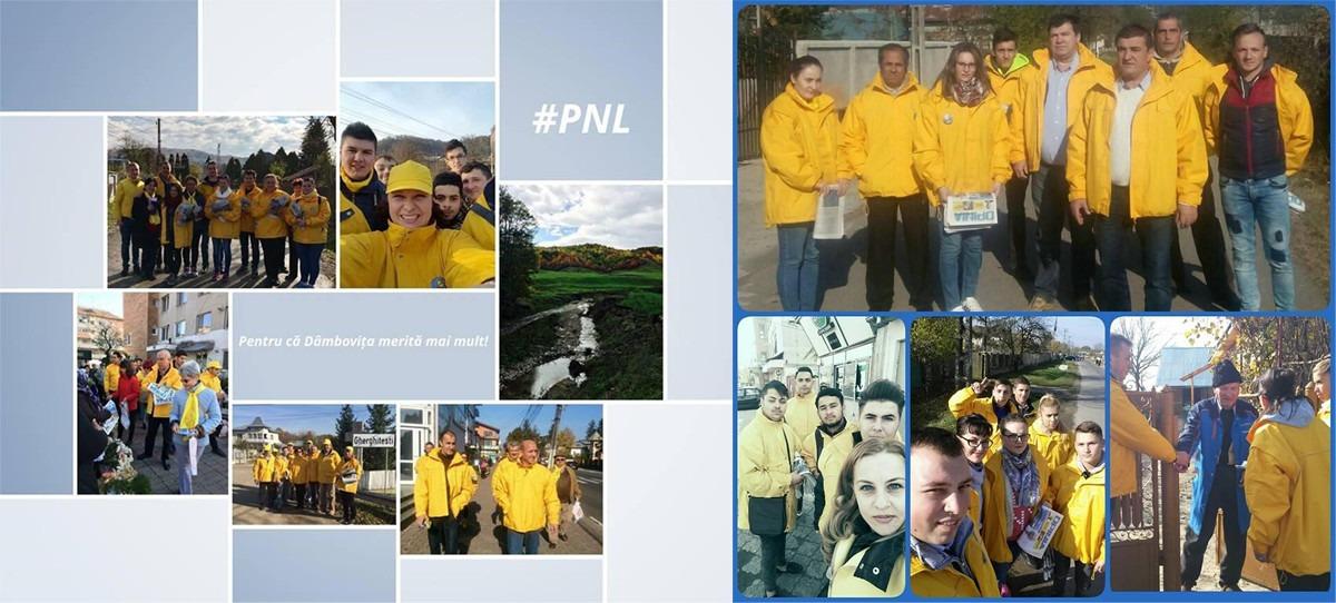 pnl-electoral-actiuni