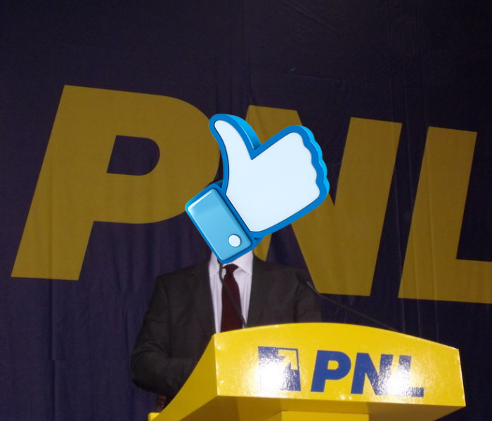 PNL Dâmbovița caută persoane pentru secţiile de votare pe… Facebook