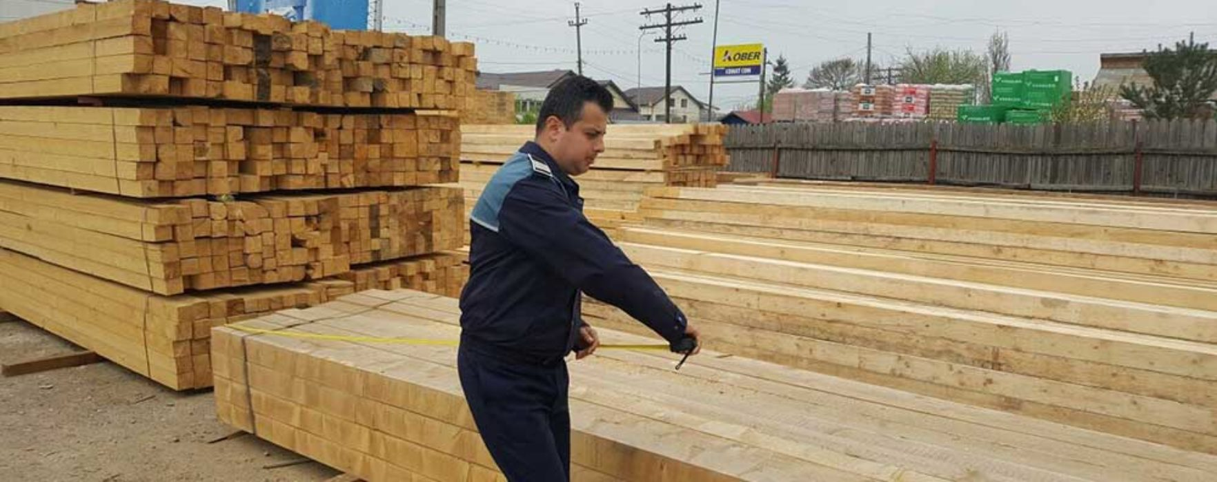 Dâmboviţa: Nereguli privind expedierea materialului lemnos, sancţionate de poliţişti la un ocol silvic privat