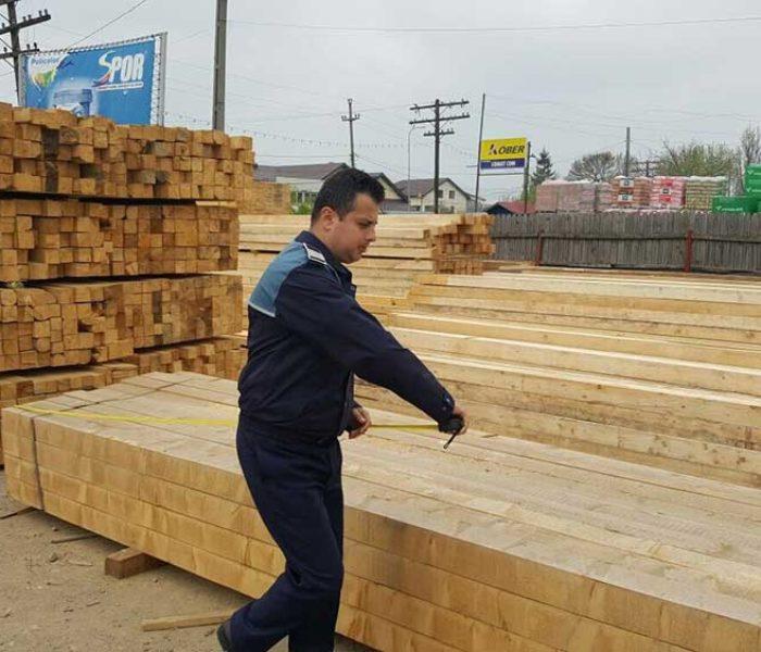 Dâmboviţa: Controale privind delictele silvice; confiscați aproape 80 de metri cubi de material lemnos
