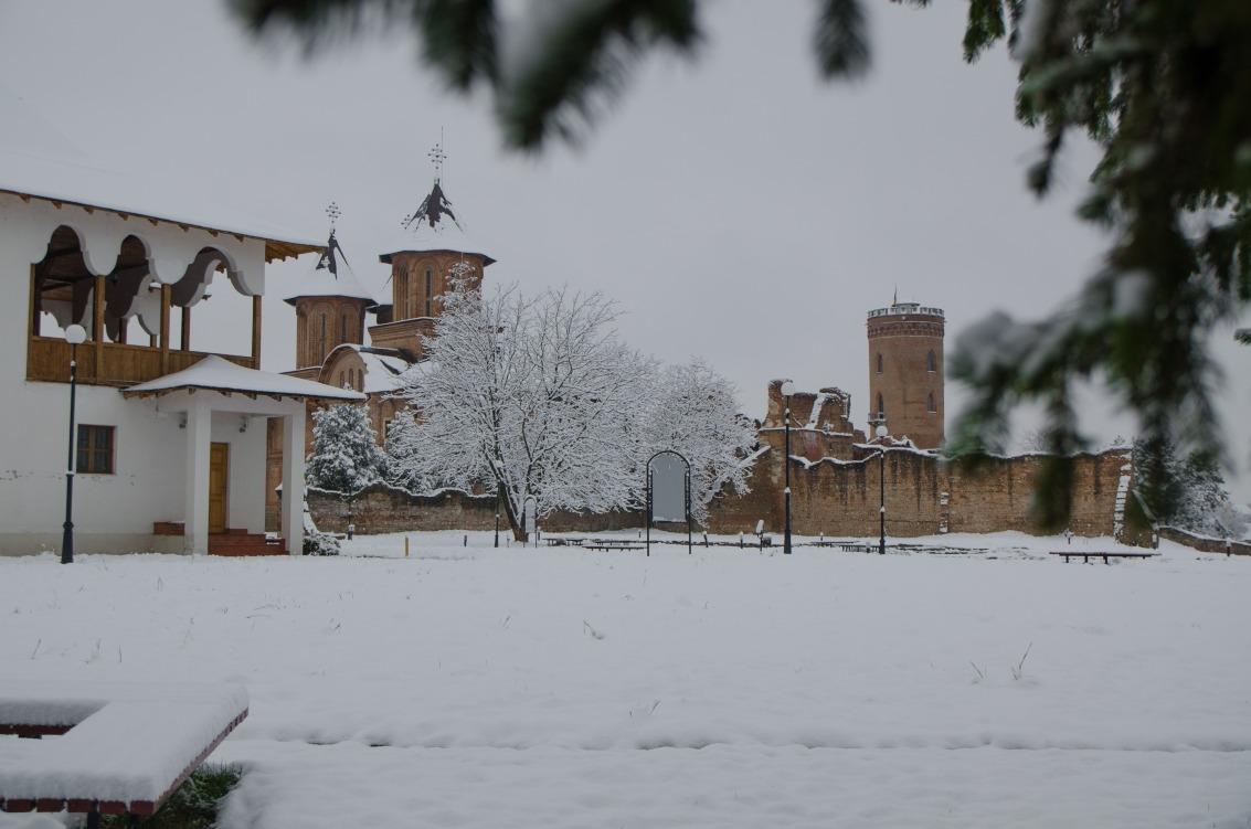 prima ninsoare noiembrie 2013-03