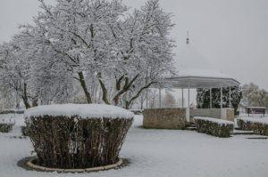 prima ninsoare noiembrie 2013-10