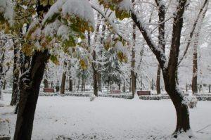 prima ninsoare noiembrie 2013-11