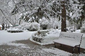prima ninsoare noiembrie 2013-13