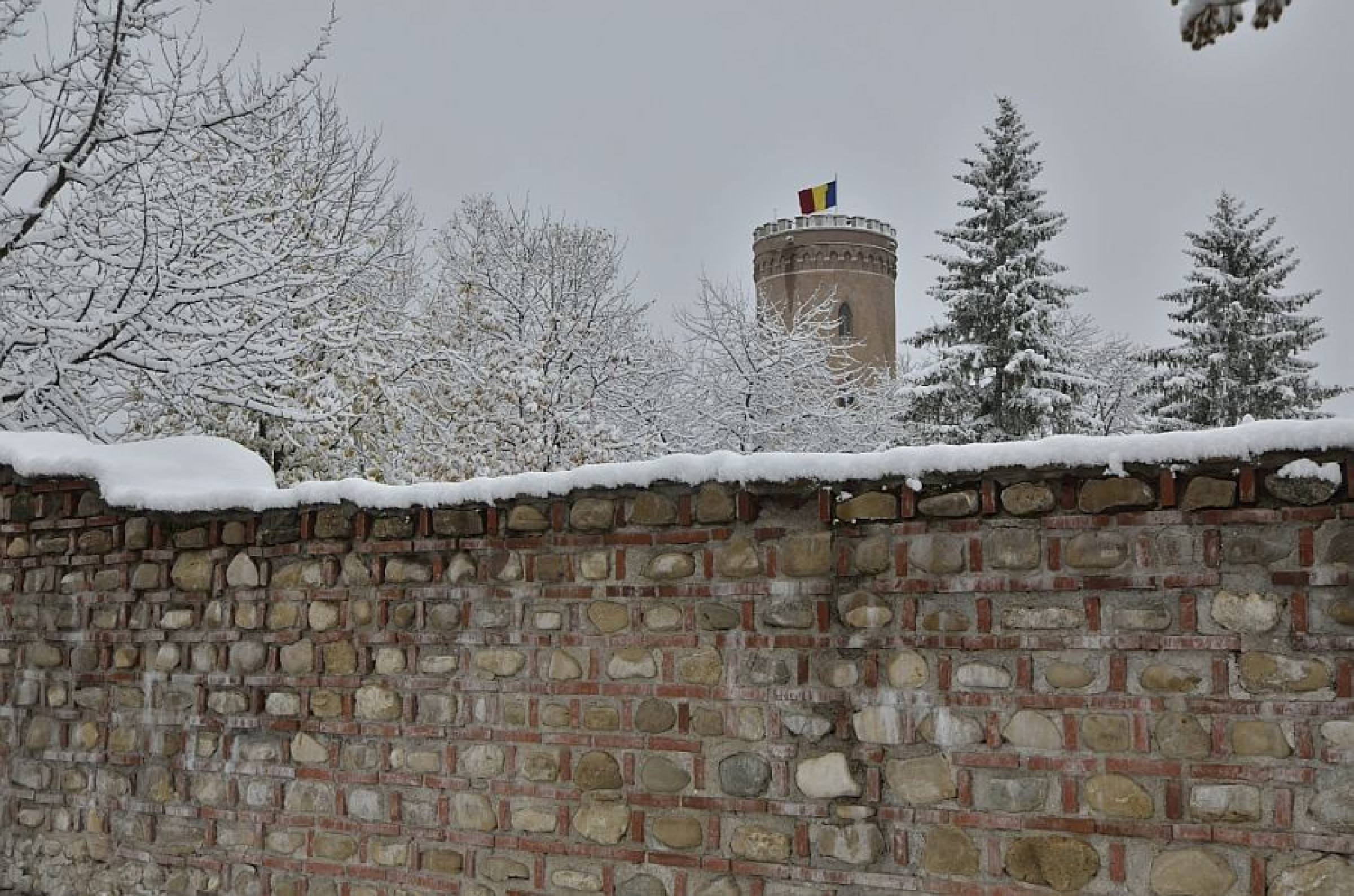 Prima ninsoare din această iarnă, la Târgovişte (foto)