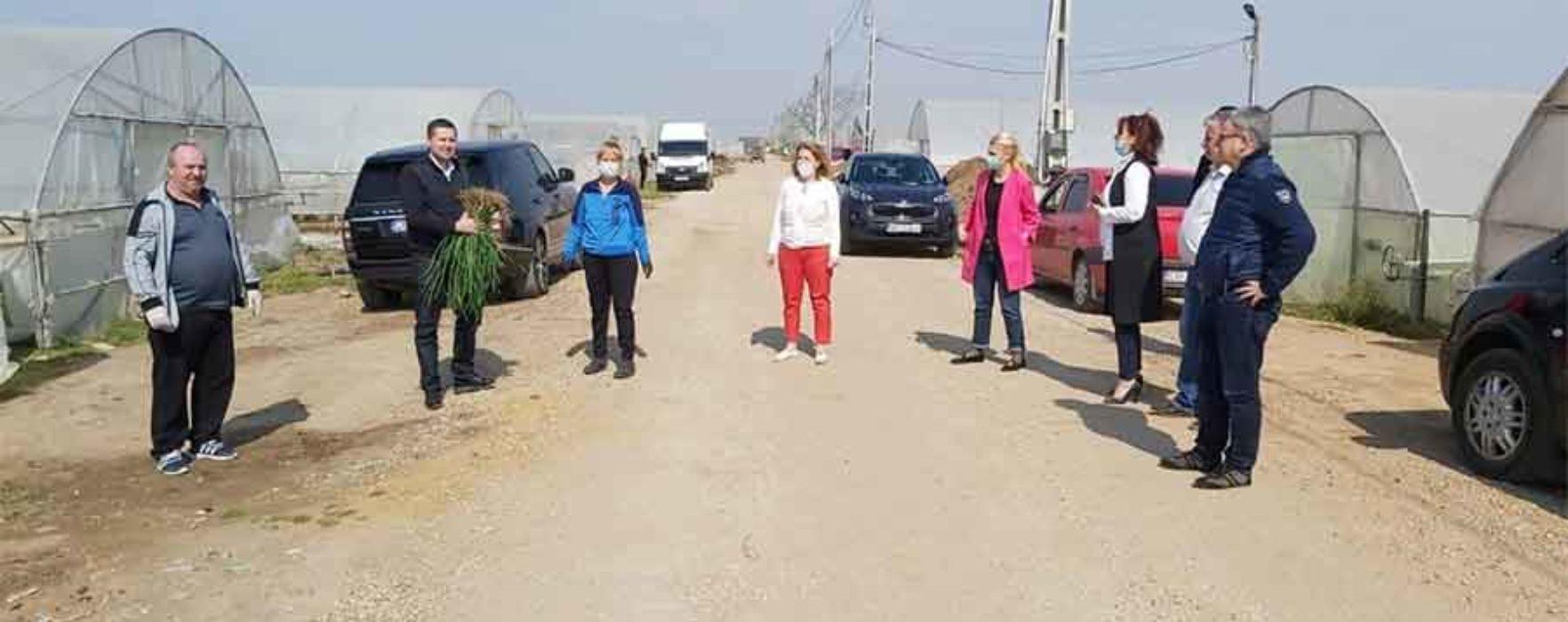 PSD Dâmboviţa, campanie de susţinere a producătorilor locali
