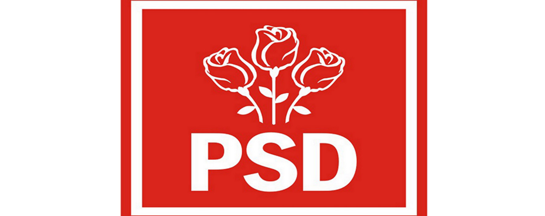 PSD Dâmboviţa îşi propune să obţină peste 50% din voturi la prezidenţiale