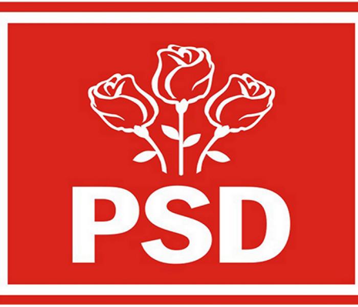 """PSD Dâmboviţa: Liberalii îşi împart funcţiile prin judeţ; copiază modelul ministrului """"Grindă""""?"""