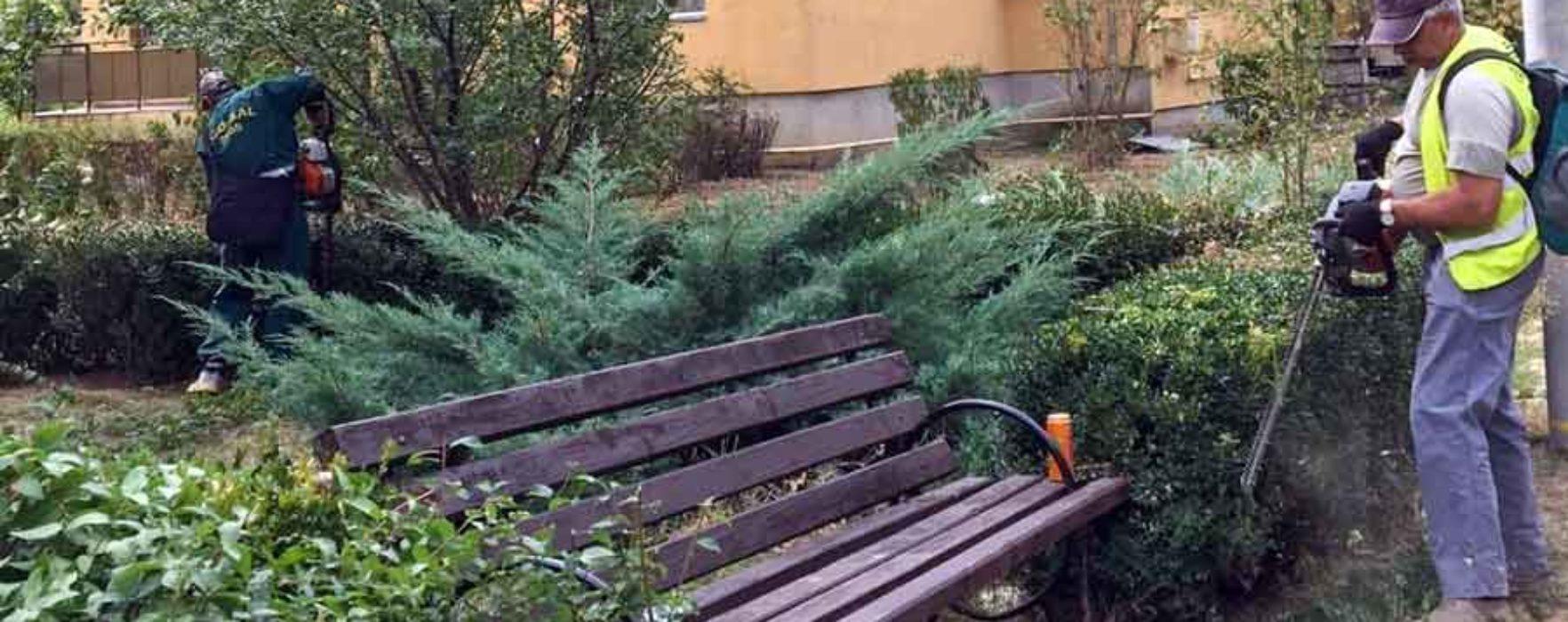 Târgovişte: Se amenajează spaţiile verzi din municipiu