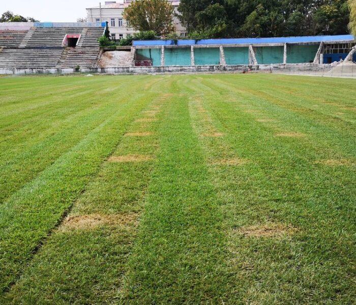 """Târgovişte: Primăria anunţă prin aplicaţia Târgovişte City App că se montează gazonul pe Stadionul """"Eugen Popescu"""""""