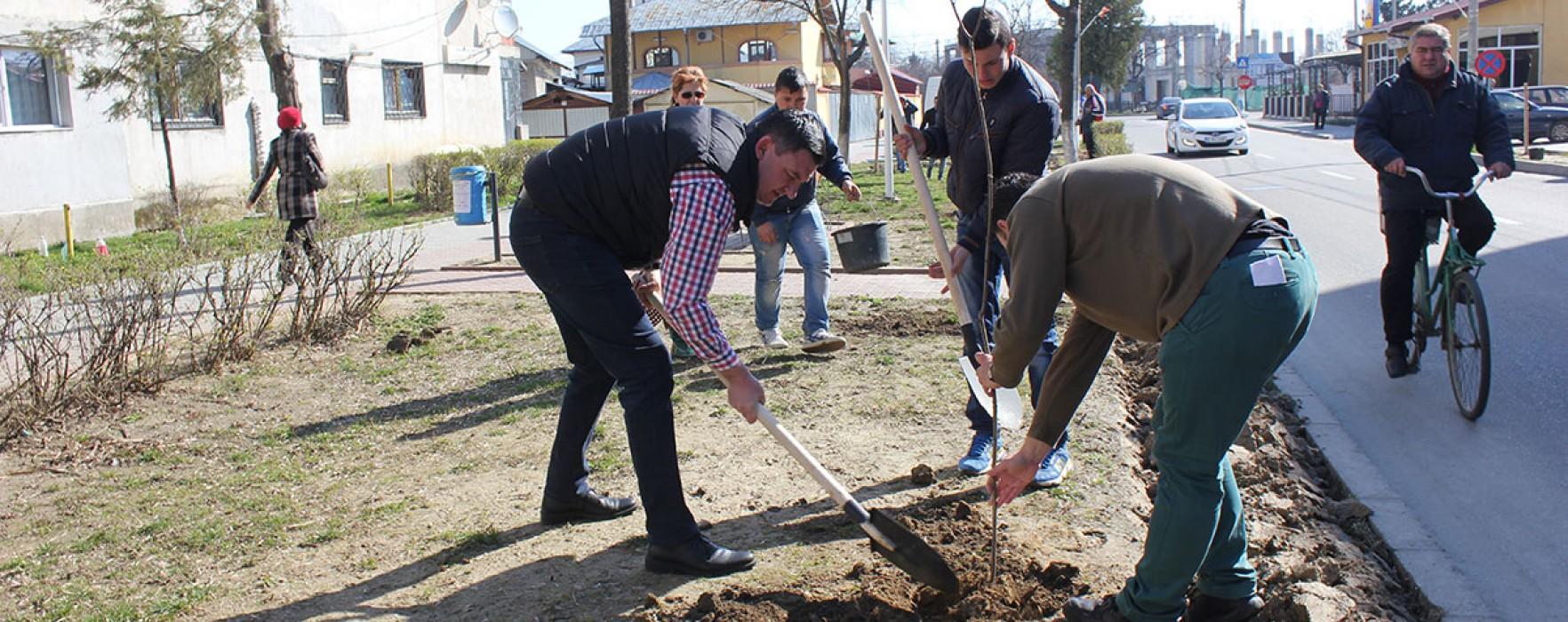 Titu: Acţiune de plantare de arbori