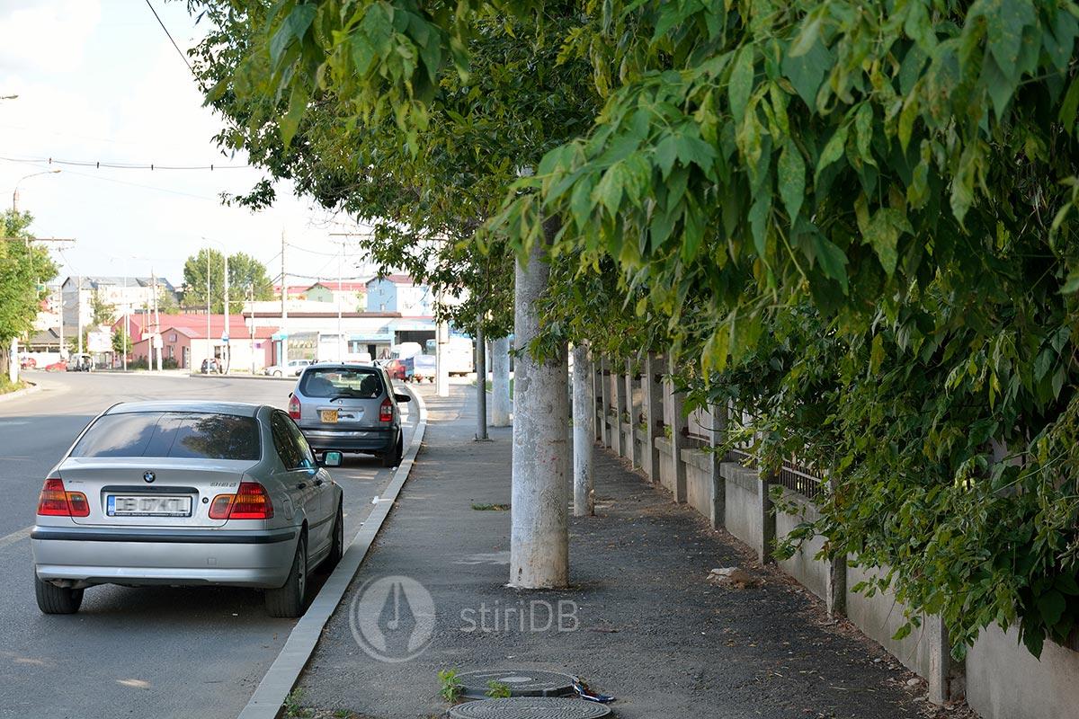 trotuare-stalpi-07