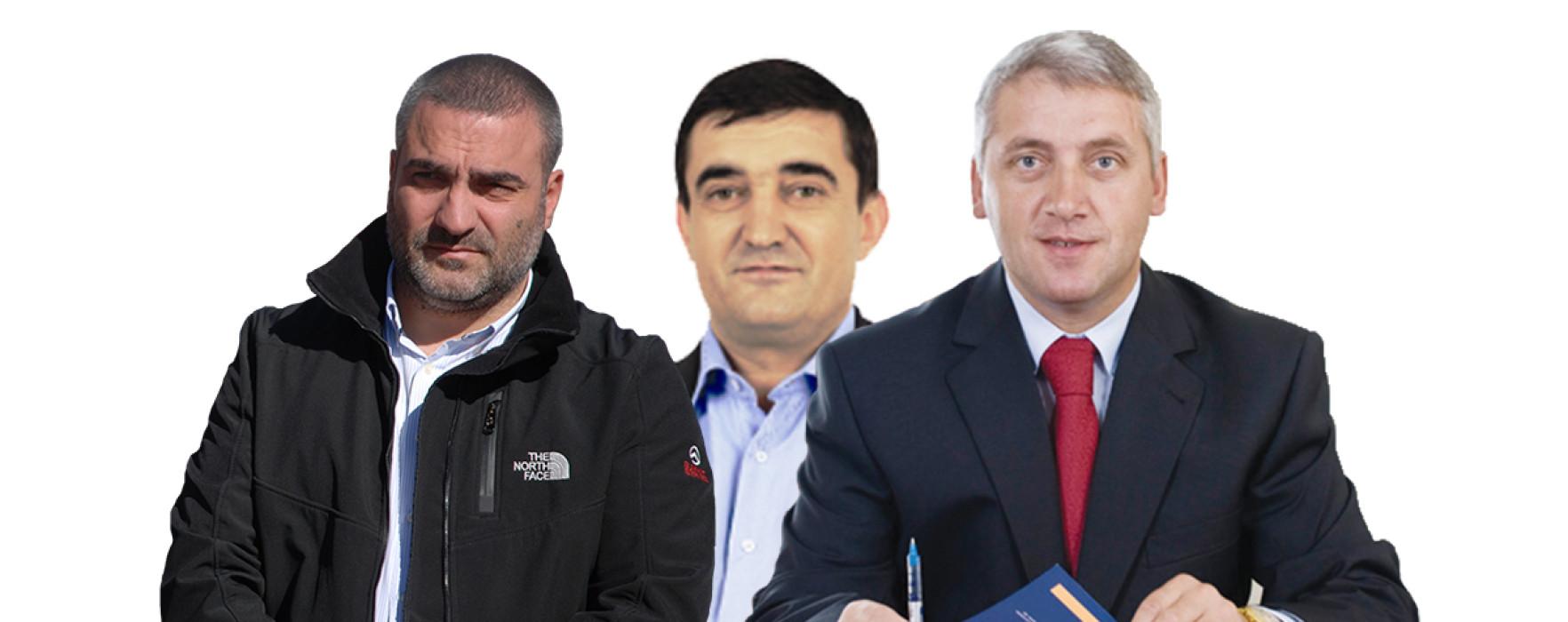 Volintiru, Vladu și Ţuţuianu, declaraţii despre europarlamentare şi referendum