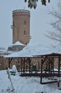 zapada ianuarie-10