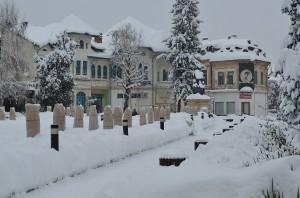zapada ianuarie-3